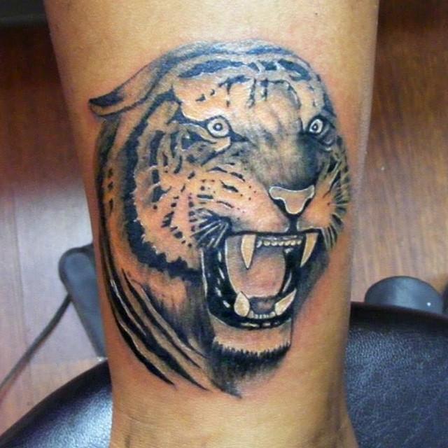 #avcılar #tattoo #avcılartattoo #animaltattoo #angeltattoostudio #angeltattoopie…